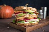 Turkey Leftover Sandwich poster