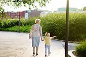Beautiful Granny And Her Little Grandchild Walking Together In Park. Grandmother And Grandson Holdin poster