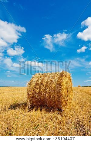 Hay Bale On The Field