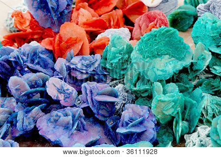 Colorful desert roses