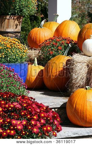 Fall entrance with pumpkins and flowers