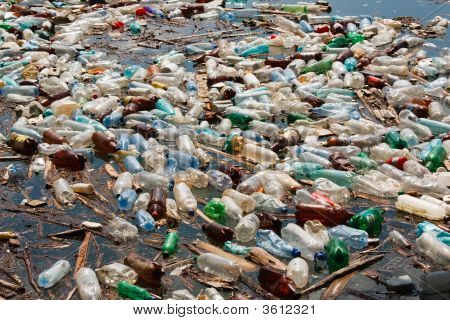 Plastic Bottle Pollution