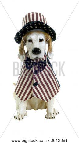 Patriotic Dog Statue