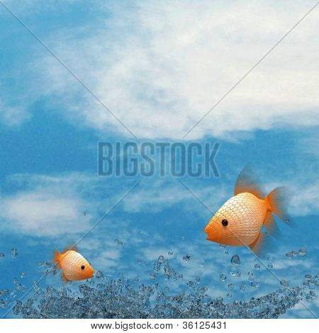 Water splash, fish and nice sky