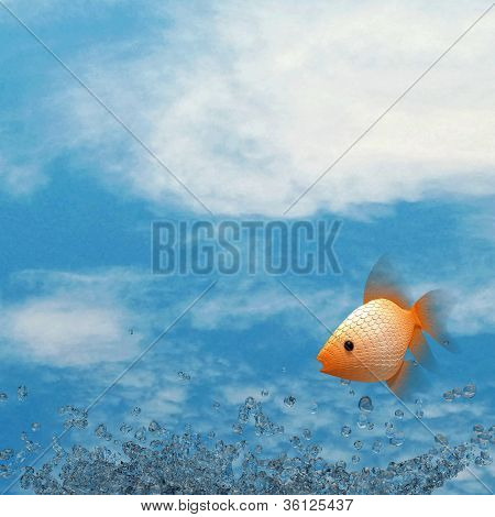 Water splash, fish and nice sky