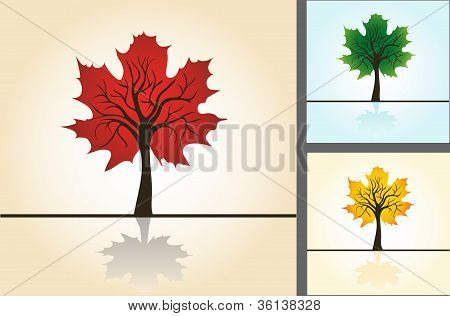 Set postcards, stylized maple