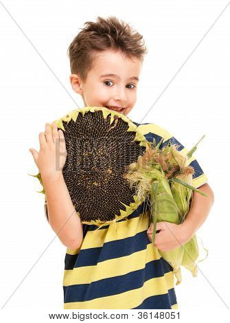 Little Boy Holding Corn On The Cob And Sunflower Ripe