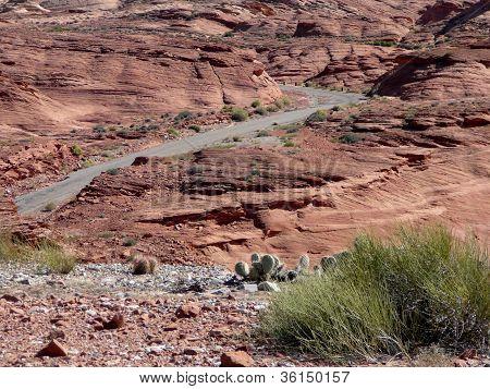 Winding Path Through the Desert