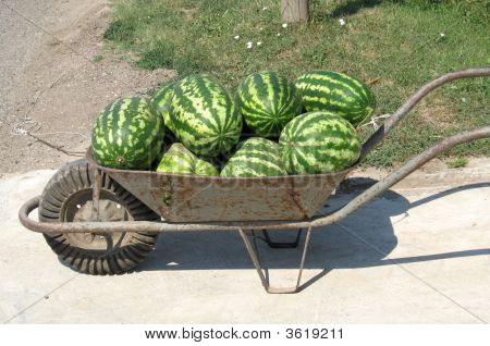 Old Iron Handcart With Wate-Melons