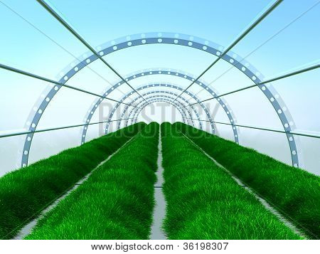 long greenhouse