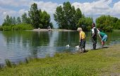 stock photo of duck pond  - 3 boys looking at a pond - JPG