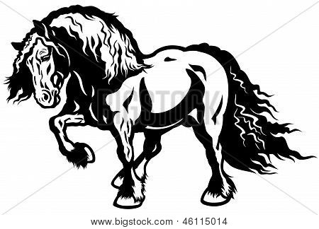 Heavy Horse Black White