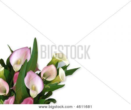 Calla Lilies Corner Design