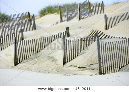 Sand Dunes For Environment On The Beach