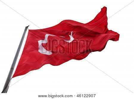 Ondeando la bandera de Turquía con el asta de la bandera