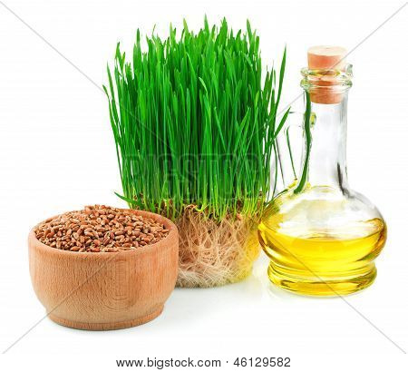 Wheat Sprouts, Wheat Seeds In The Wooden Bowl And Wheat Germ Oil