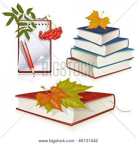 Vector illustration of school education objects