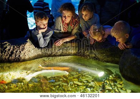 Young woman and several children look at fishes in enlighted pool at oceanarium