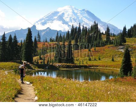 Mt. Rainier from Nachez Trail