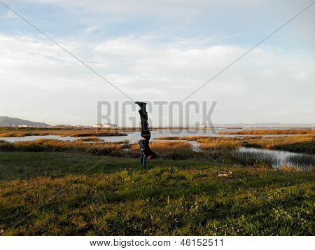 Handstanding Marshes Near The Sfo Airport