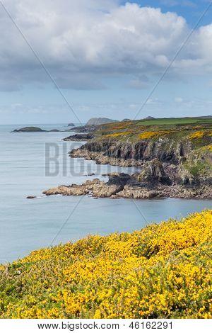 Rugged Wales Coast