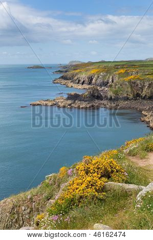 St Brides Bay Pembrokeshire West Wales UK