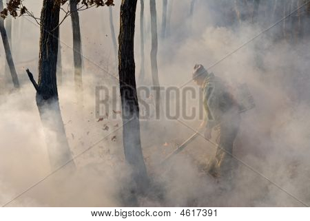 Suppression Of Forest Fire