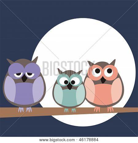 Funny, staring owls sitting on branch on a full mon night - vector illustration
