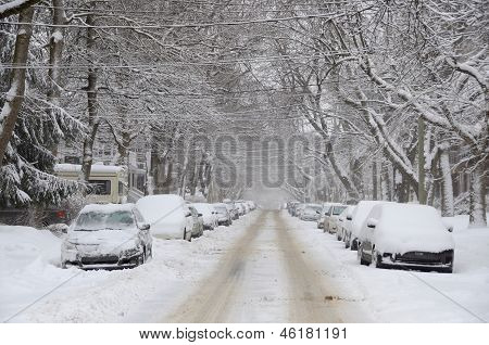 Cars cover of snow