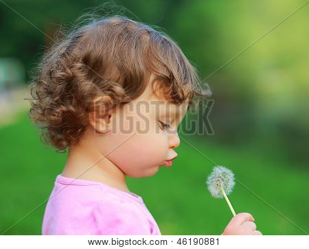 Fun Cute Child Blowing On Dandelion Flower On Green Summer Background