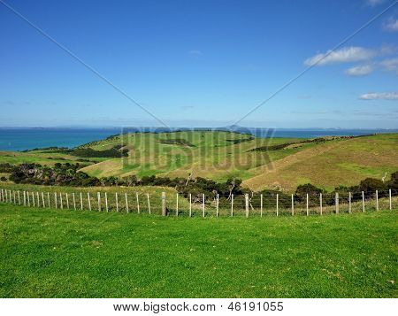 Grassland rolling hills