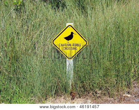 Birds crossing sign