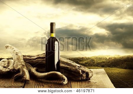 Wine And Vineyard