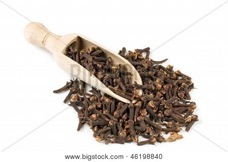 Spice Clove Spice In Spoon