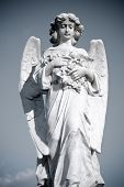 stock photo of cherubim  - Grieving Angel on the old cemetery - JPG