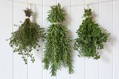 foto of oregano  - Bunches of fresh herbs hanging over white timber - JPG