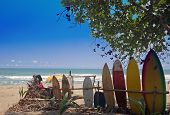 pic of watersports  - surfer beach on southern caribbean coast of costa rica - JPG