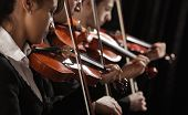 stock photo of string instrument  - Symphony music violinists at concert on black background - JPG