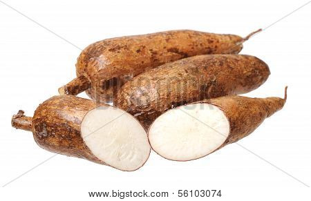 Cutting And Whole Manioc
