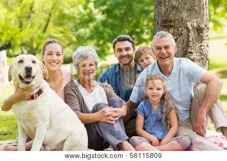 Retrato de una familia extendida con su perro sentado en el parque