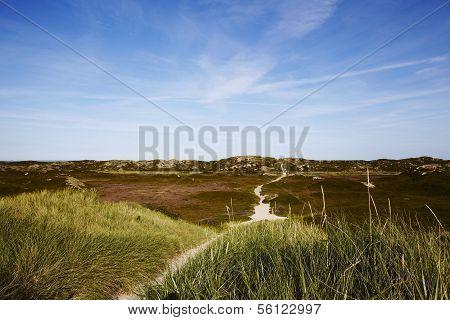 Sylt (germany) - Sand Dune At Puan Klent
