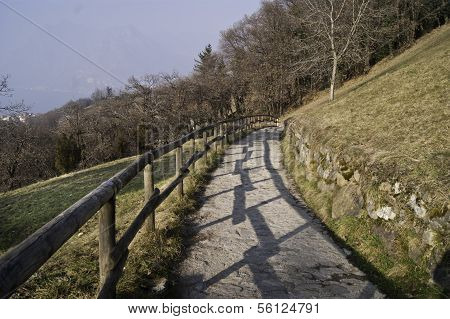 Mountain Path With Wooden Fence