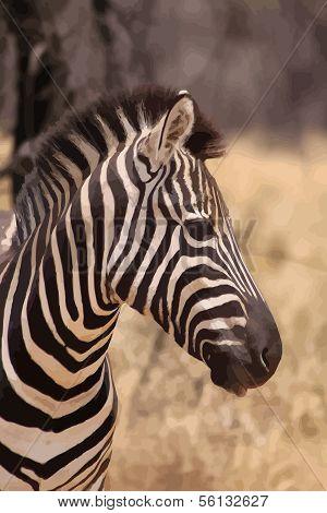 Zebra Head Side Profile Vector