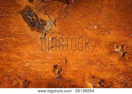 Rust Stained Concrete