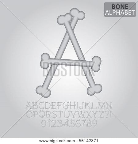 Bone Alphabet And Numbers Vector