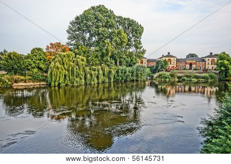 Weeping Willow On The River Bed Of Shrewsburry England, Uk. Hdr Picture