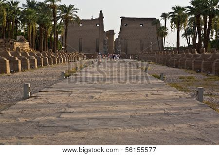 route into Luxor Temple