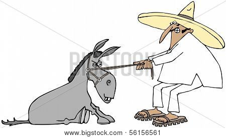Mexican pulling a stubborn donkey