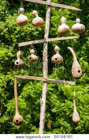 Hanging Gourd Birdhouses