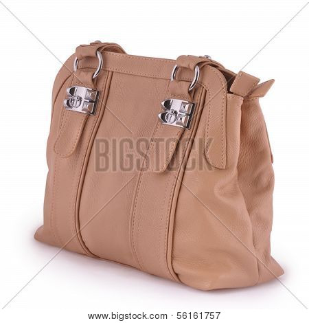 Women Handbag (clipping Path)